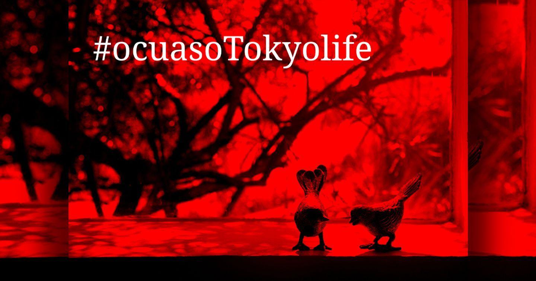 Chiến dịch ô cửa sổ Tokyolife