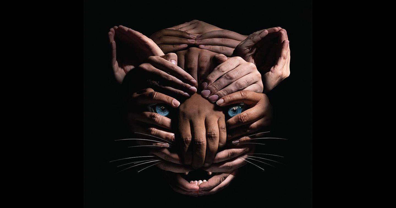 Print-ad với tạo hình ấn tượng cảnh báo về nạn lạm dụng hổ con