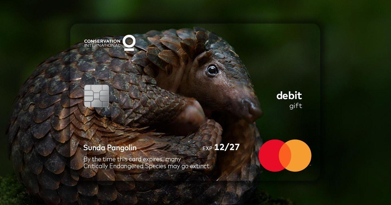 MasterCard biến ngày hết hạn thẻ thành thông điệp bảo vệ động vật quý hiếm