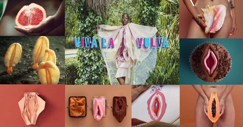 """Libresse hình tượng hóa bộ phận nhạy cảm của phụ nữ trong quảng cáo """"Viva La Vulva"""""""
