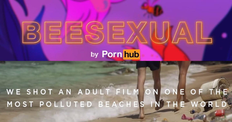 Pornhub và các chiến dịch bảo vệ môi trường gắn mác 18+