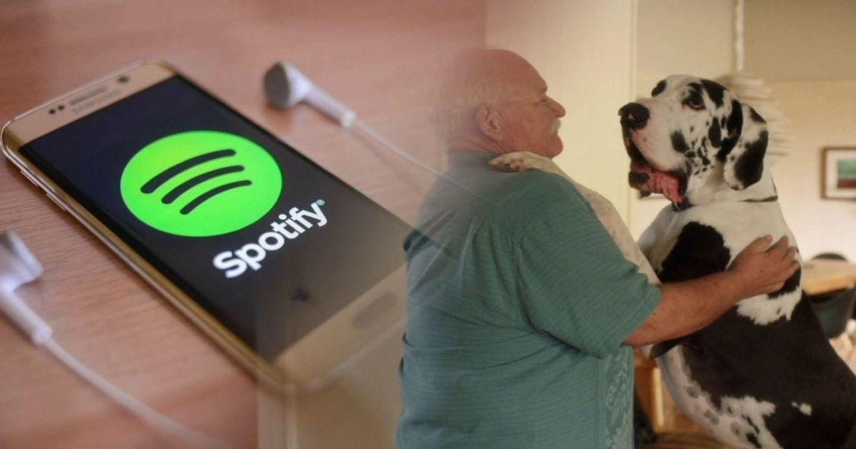 Vượt mặt Apple Music, Spotify ra mắt dịch vụ nghe nhạc cho thú cưng